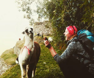 Safe Trips to Machu Picchu with TOUR IN PERU
